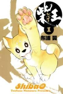 柴王(1)