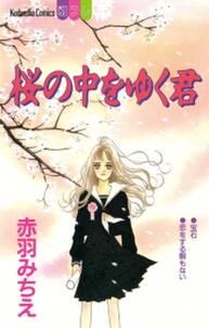 桜の中をゆく君(1)