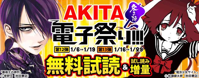 AKITA電子祭り 冬の陣 第13弾