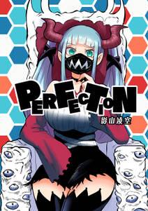 PERFECTION(1)